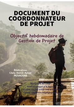 DOCUMENT DU COORDONNATEUR DE PROJETS - Couverture Ebook auto édité