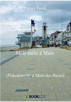Méli-mélo à Malo - Couverture de livre auto édité