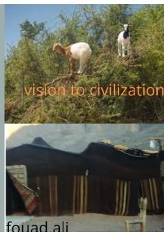 vision to civilisation - Couverture de livre auto édité