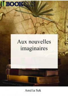 Aux nouvelles imaginaires - Couverture de livre auto édité