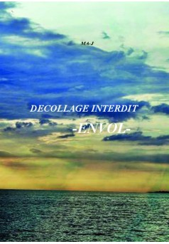 Decollage Interdit - Cover book