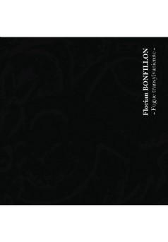 Fugue transylvanienne - Couverture de livre auto édité