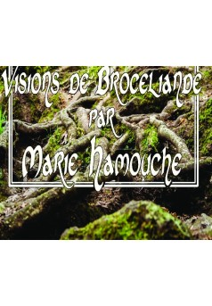 Visions de Brocéliande par Marie Hamouche