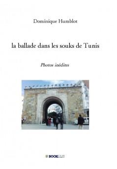 la ballade dans les souks de Tunis