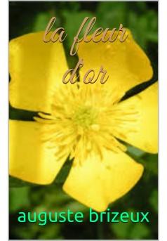 la fleur d'or - Couverture Ebook auto édité