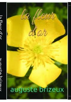la fleur d'or - Couverture de livre auto édité