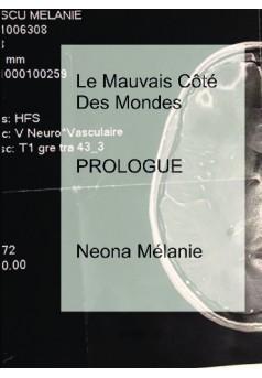 Le Mauvais Côté Des Mondes - Couverture de livre auto édité