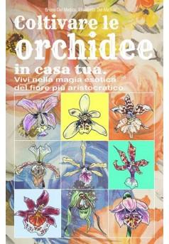 Coltivare le orchidee in casa tua.