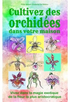 Cultivez des orchidées dans votre maison