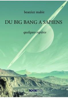 DU BIG BANG A SAPIENS - Couverture de livre auto édité