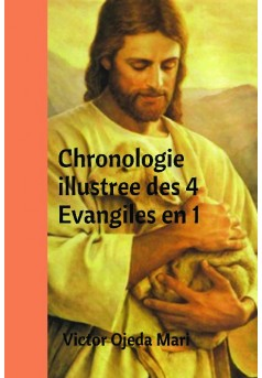 Chronologie illustree des 4 Evangiles en 1