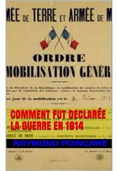 COMMENT FUT DÉCLARÉE LA GUERRE DE 1914 - Couverture de livre auto édité