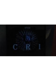CRI 2 - Couverture Ebook auto édité