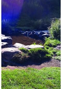 """collection des """"Lettres de saison"""""""