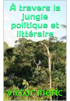 a travers la jungle politique et litteraire - Couverture de livre auto édité