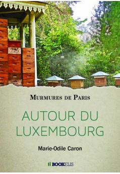 AUTOUR DU LUXEMBOURG  - Couverture Ebook auto édité