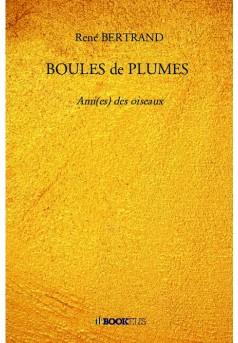 BOULES de PLUMES  - Couverture de livre auto édité