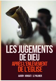 Les jugements de Dieu après l'enlèvement de l'Eglise - Couverture de livre auto édité