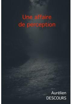 UNE AFFAIRE DE PERCEPTION - Couverture Ebook auto édité